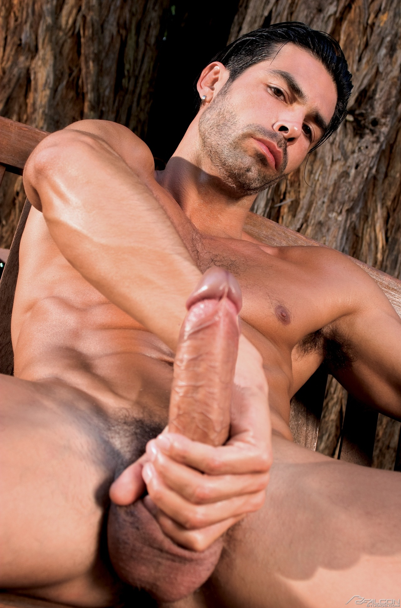 gay video big daddy bareback